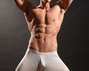 Muscle Men -  - Gay Porn Review