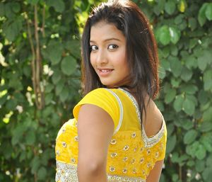sizzling southern stars: south indian..