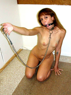Your cheating whore wifes need..