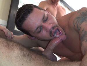 Porn Star Tate Ryder - Boy Perfect